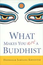 libro lo que no te hace budista